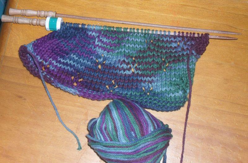 Tulipdishcloth